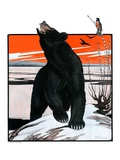 """Bear and Robin Welcome Spring,""March 14, 1925 Giclee Print by Paul Bransom"