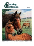 """Mares and Foals,"" Country Gentleman Cover, May 1, 1947 Giclee Print by Francis Chase"