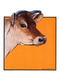 """Dairy Cow,""May 12, 1923 Giclee Print by Charles Bull"