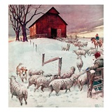 """Herding Sheep into Barn,""February 1, 1946 Giclee Print by Matt Clark"