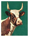 """Long-Horned Cow,""February 1, 1945 Giclee Print by F.P. Sherry"
