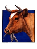 """Cow Chewing Corn Stalk,""November 17, 1923 Giclee Print by Charles Bull"