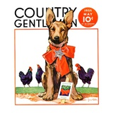 """Guarding the Garden,"" Country Gentleman Cover, May 1, 1935 Reproduction procédé giclée par Jene Klebe"