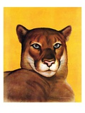 """Mountain Lions,""September 25, 1937 Giclee Print by August Schombrug"