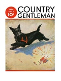 """""""Dog and Firecrackers,"""" Country Gentleman Cover, July 1, 1936 Giclee Print by Nelson Grofe"""