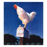 """Rooster on Mailbox,""May 1, 1941 Giclee Print"