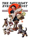 &quot;Barking Up the Wrong Turkey,&quot; Saturday Evening Post Cover, November 27, 1926 Giclee Print by J.C. Leyendecker