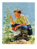"""Boy Botanist,""August 27, 1932 Giclee Print by Eugene Iverd"