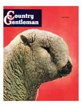 """Lamb,"" Country Gentleman Cover, May 1, 1948 Giclee Print by Stanley Johnson"