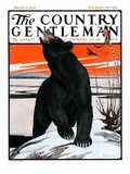 """Bear and Robin Welcome Spring,"" Country Gentleman Cover, March 14, 1925 Giclee Print by Paul Bransom"