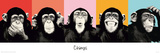 The Chimp - Compilation Print