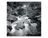 Presque Isle Giclée-tryk af Stephen Gassman