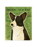 Cardigan Welsh Corgi Giclee Print by John Golden