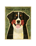 Bernese Mountain Dog Giclee Print by John Golden