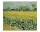 Field with Flowers Near Arles, 1888 Giclee Print by Vincent van Gogh