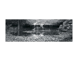 Falls Panorama Giclee Print by Stephen Gassman