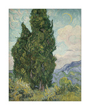 Cypresses, 1889 Giclee Print by Vincent van Gogh