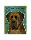 English Mastiff (Brindle) Giclee Print by John Golden