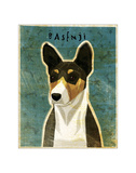 Basenji (Tri-Color) Giclee Print by John Golden