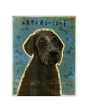 Black Labradoodle Giclee Print by John Golden