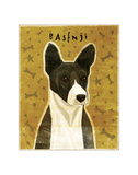 Basenji (Black) Giclee Print by John Golden