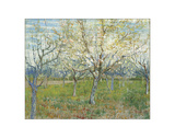 The Pink Orchard, 1888 Giclee Print by Vincent van Gogh