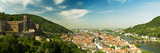 View over Old Heidelberg and Castle Photographic Print by Reinhard Bruckner