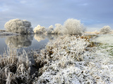 Winter Landscape at River Elbe in Hamburg Photographic Print by Christian Ohde