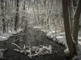 The Briesetal in Winter Photographic Print by Gabi Wolf