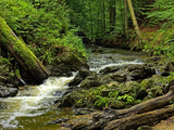 Small Forest Stream Landscape Photographic Print by Ullrich Gnoth