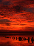 Beautifull Sunset Near Lindau in the Lake of Constance Photographic Print by Erich Haefele