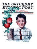 """Boy Tempted by Apples,"" Saturday Evening Post Cover, October 4, 1924 Giclee Print by Clarence William Anderson"