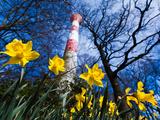 Bodo von Ulmenstein Ulmenstein - Spring at the Lighthouse - Fotografik Baskı