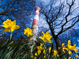 Spring at the Lighthouse Photographic Print by Bodo von Ulmenstein Ulmenstein