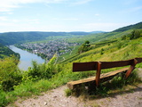 View Bench Near Kröv on the Moselle Photographic Print by Beate Tuerk