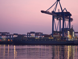 Container Ships at the Container Terminal Altenwerder Photographic Print by Andreas Rose