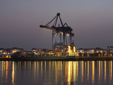 Container Ships at the Container Terminal Altenwerder Photographic Print