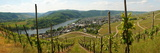 Kröv on the Moselle Panorama Photographic Print by Beate Tuerk