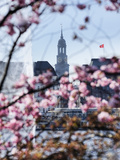 Springtime at Lake Alster and St. Michaelis Church in Hamburg Photographic Print