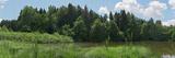 Bog Lake Photographic Print by Christian Bullinger