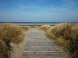 Way to the North Sea on the Island Langeog Photographic Print by Karin Schwan