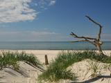 Beach at the Darß Reproduction photographique par Dieter Moebus