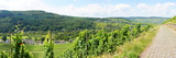 Wine Landscape Near Traben- Trarbach Panorama Photographic Print by Beate Tuerk