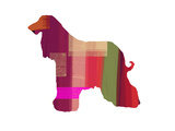 Afghan Hound 2 Print by  NaxArt