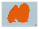 Japanese Chin Orange Posters by  NaxArt