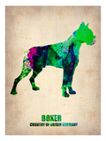 Boxer Poster Poster Prints by  NaxArt