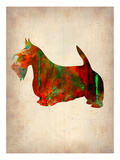 Scottish Terrier Watercolor 2 Posters by  NaxArt