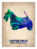 Scottish Terrier Poster Posters by  NaxArt