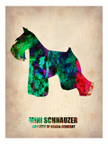 Miniature Schnauzer Poster Posters by  NaxArt
