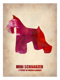 Miniature Schnauzer Poster Poster by  NaxArt